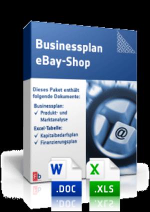 Businessplan eBay-Shop