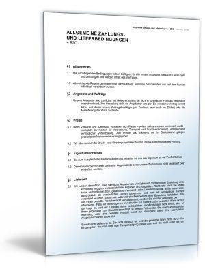 Allgemeine Liefer- und Zahlungsbedingungen (AGB)