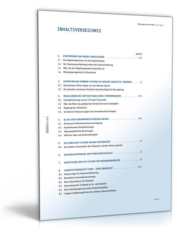 Mini-Ratgeber Steuer 2009 1